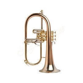 Bugle Sib