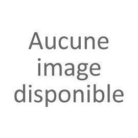 PRECIS POUR L' ETUDE DES GAMMES - Guy LACOUR - Hautbois